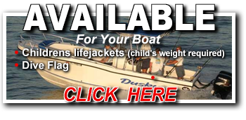 Available for you Boat Rental